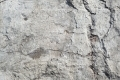 Free Cement Texture -04-09-2016-0010