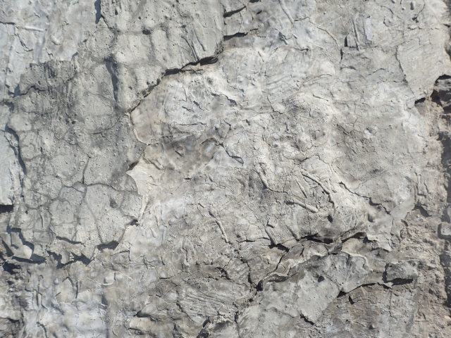Free Cement Texture -04-09-2016-0016