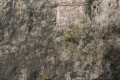 Free Rock Texture - 19-11-2011 001