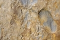 Free Rock Texture 06-03-2013 0005