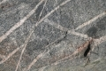 Free Rock Texture 12-09-2015 00005