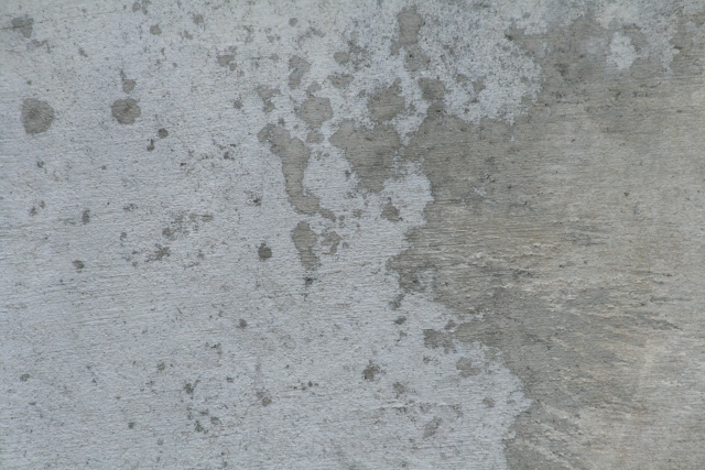 Free Texture Cement 2010_10_01_24