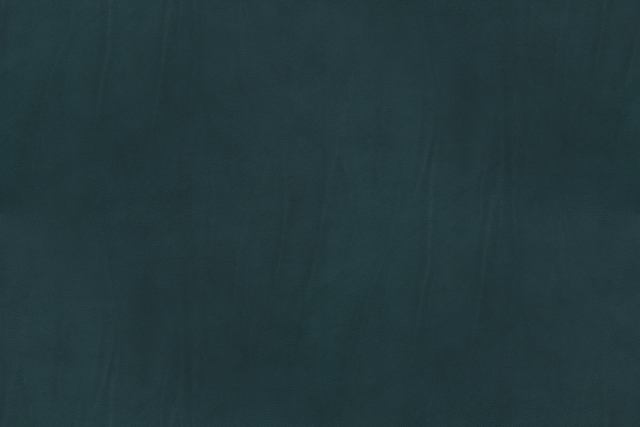 Free Texture Sorensen Leather 13-02-2014 00029 - Sorensen Leather - Campo-ocean-20841