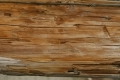 Free Wood Texture - 19-11-2011 001