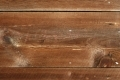 Free Wood Texture - 19-11-2011 006