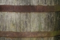 Free Wood Texture - 19-11-2011 013