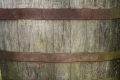 Free Wood Texture - 19-11-2011 014
