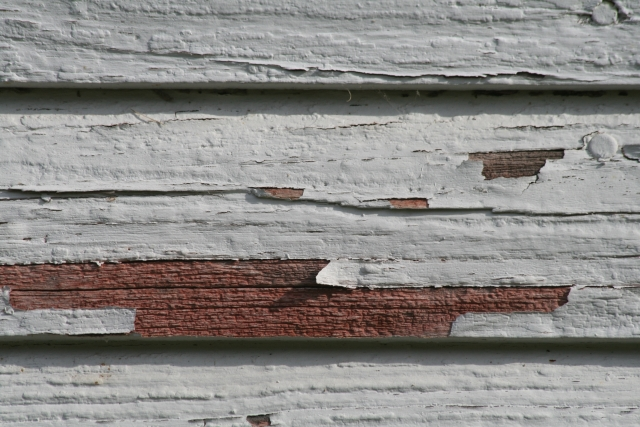 Free Wood Texture - 19-11-2011 015