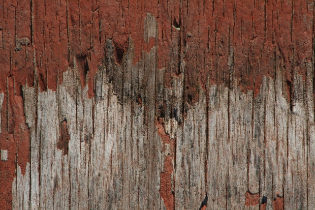 Free Wood Texture - 25-07-2011 009