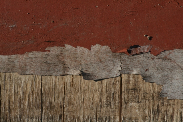 Free Wood Texture - 25-07-2011 018
