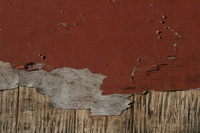 Free Wood Texture - 25-07-2011 020