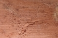 Free Wood Texture -03-09-2016-0016