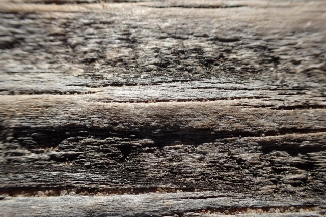 Free Wood Texture -03-09-2016-0026