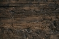 Free Wood Texture -27-12-2015-0001