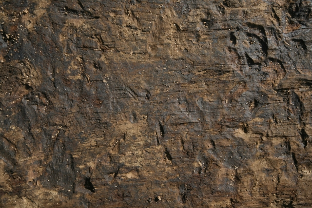 Free Wood Texture -27-12-2015-0004