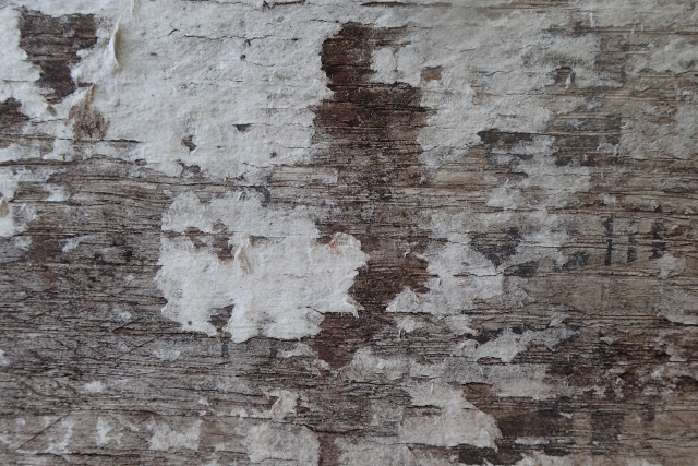 Free Wood Texture -28-08-2016-0007
