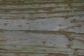 Free Wood Texture -30-12-2015-0010