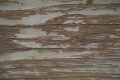 Free Wood Texture -30-12-2015-0015