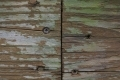 Free Wood Texture -30-12-2015-0016