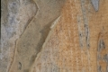 Free Wood Texture 01-09-2015 00010