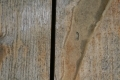 Free Wood Texture 01-09-2015 00011