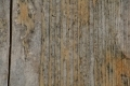 Free Wood Texture 01-09-2015 00013