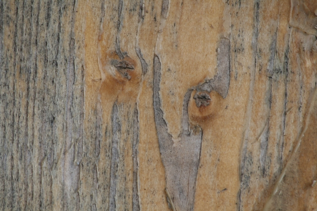 Free Wood Texture 01-09-2015 00014
