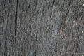 Free Wood Texture 09-05-2015 00014