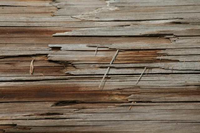 Free Wood Texture 09-05-2015 00028