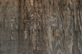 Free Wood Texture 17_10_2010 002
