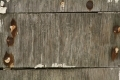 Free Wood Texture 20_10_2010 009