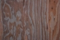 Free Wood Texture 27-02-2013 0027