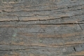 Free Wood Texture 29-03-2015 00020