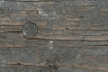 Free Wood Texture 29-03-2015 00022