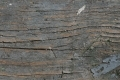 Free Wood Texture 29-03-2015 00024