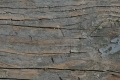 Free Wood Texture 29-03-2015 00027
