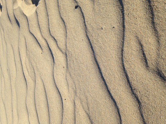 Free-Sand-Texture_10-09-2016-0001