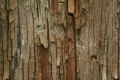 Wood_Texture_2010_08_01_32