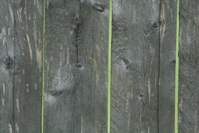 Wood_Texture_2010_08_01_37